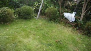 庭の片付け後