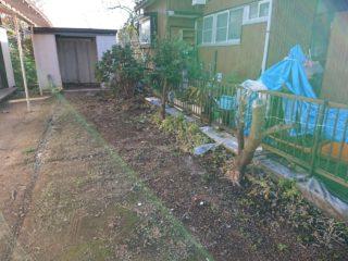川崎市多摩区切られている木の伐根